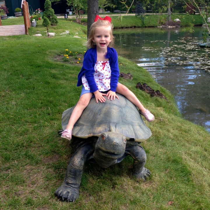 Chloe goes for a ride on the tortoise.