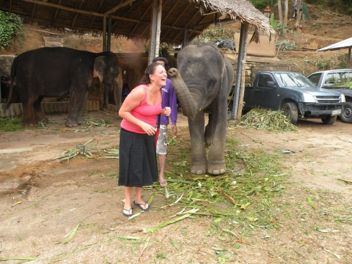 Meeting an elephant in Phuket, Thailand.