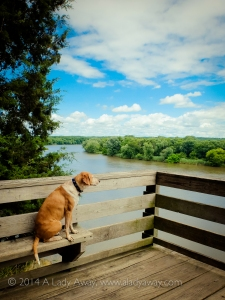 Visiting Buffalo Rock State Park with my dog